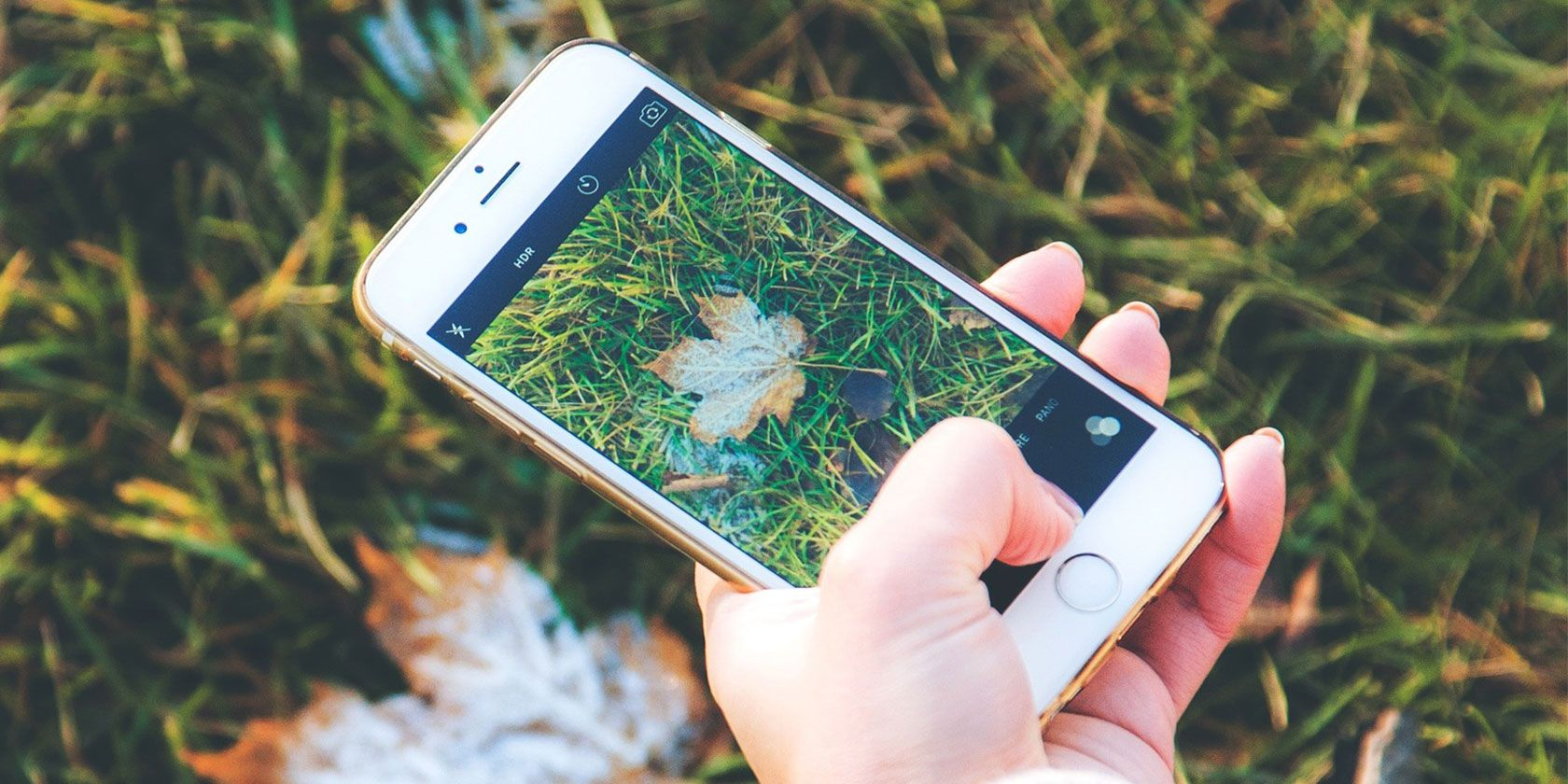 2 Easy Ways to Combine Photos on an iPhone