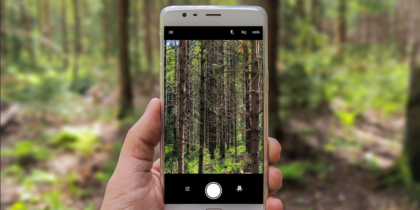 You Can Now Use One of Lens' Features on Google Photos for the Web