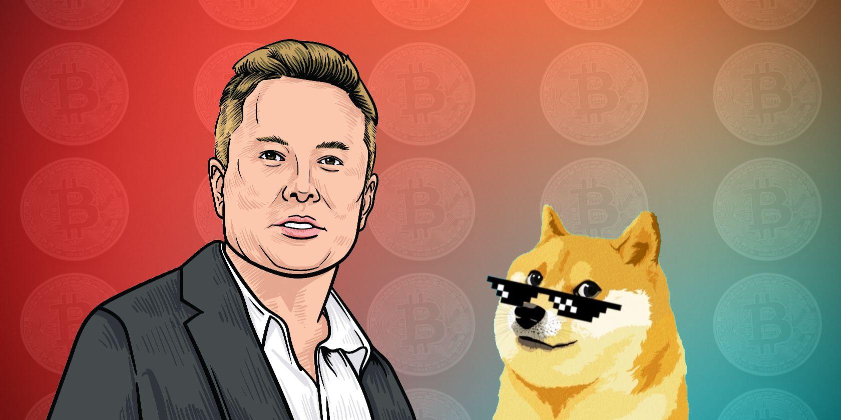 Did Elon Musk Really Cause the Bitcoin Price Crash?
