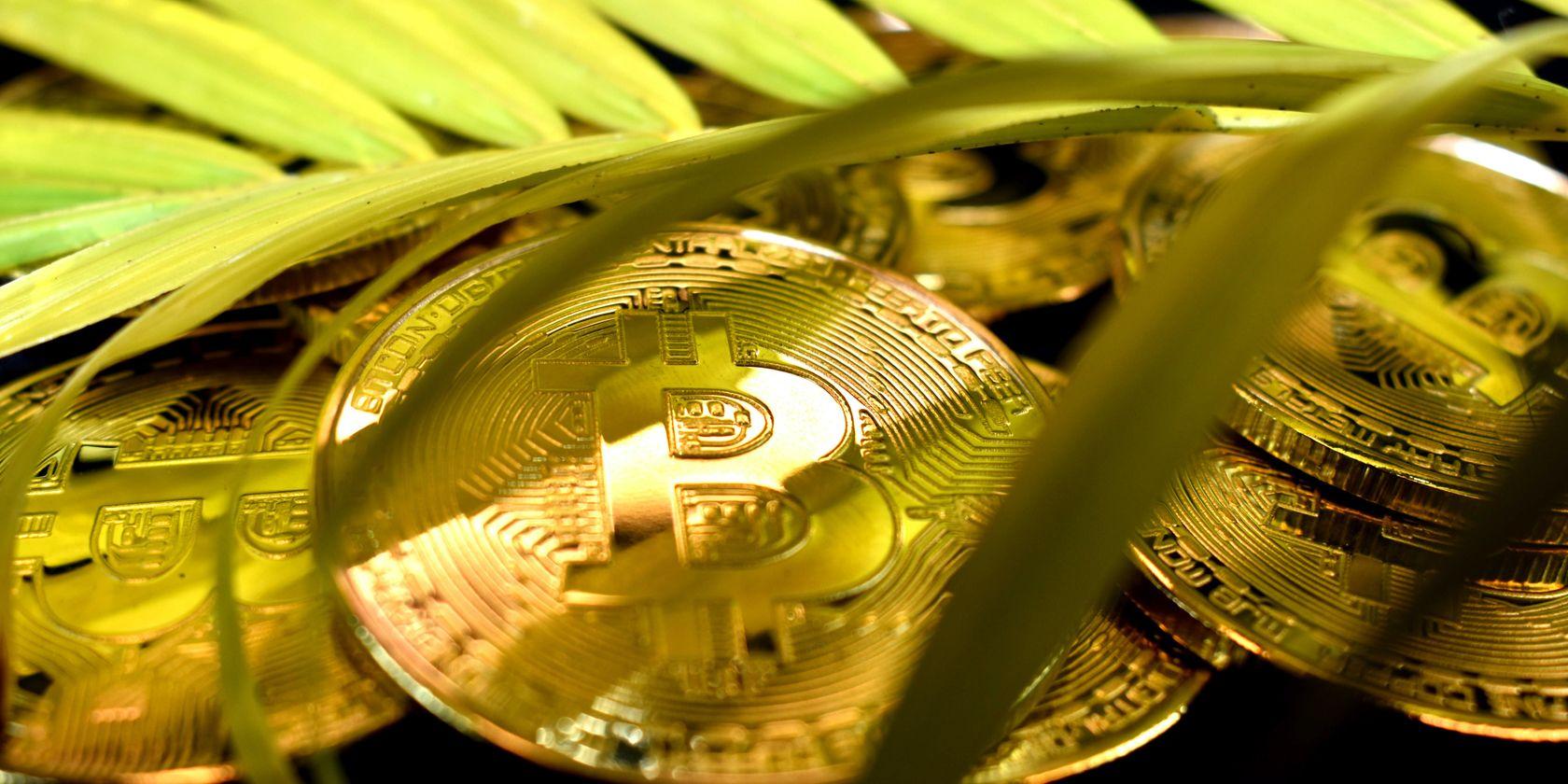 The Top 5 Environmentally Friendly Bitcoin Alternatives