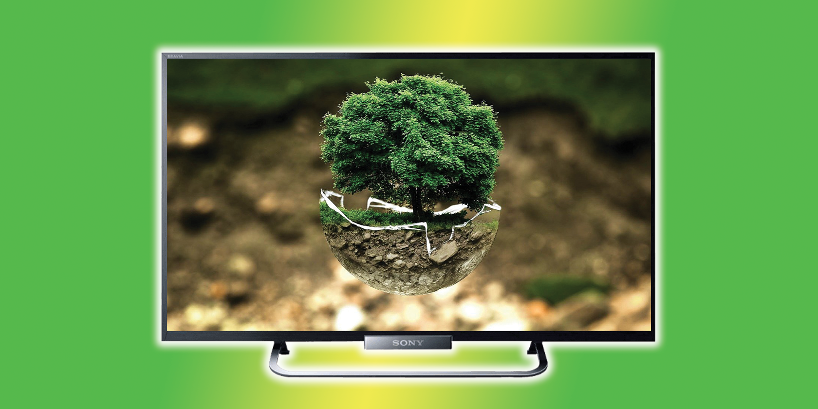 4 Ways to Make Your Entertainment More Eco Friendly