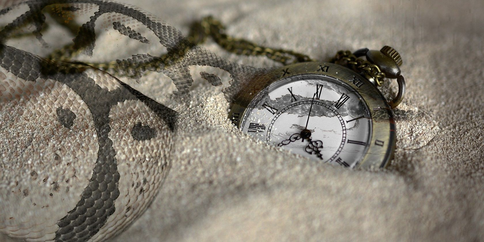 How to Use Python's time Module